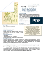 Fennel Foeniculum materia medica herbs