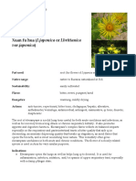 Inula Elecampane materia medica herbs