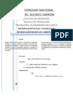 INFORME DE MICROFACIES DE ROCAS CARBONATADAS.docx
