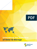 SOLAR POWER Unleashing the Potential of Solar & Storage. Mini-report-FINAL