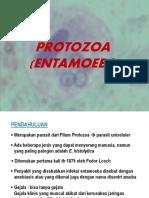 8127 2 Protozoa Entamoeba