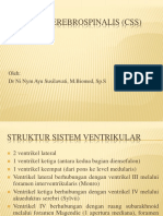18455_sistem Cairan Serebrospinalis