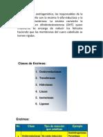CLASIFICACIÓN ENZIMAS.