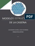 Modelos Estructurados de La Caseína