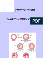Morfopatologia cardiovasculara