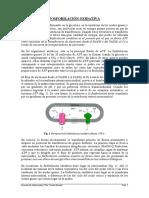 Fosforilacionoxidativa.pdf