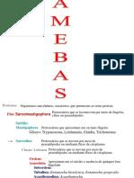 Amebas Odonto (1)