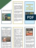 INFORMACIÓN GENERAL DEL PROYECTO.docx