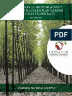 Manual de Identificación y manejo de plagas en plantaciones forestales comerciales, Cibrián 2012