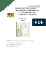 Informe 1 Gases