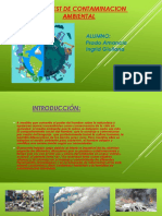 Web Quest de Contaminacion Ambiental
