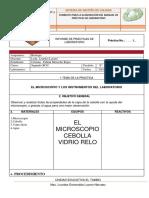PR__CTICAS-DE-LABORATORIOS (5).docx