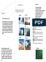 Lenguaje II Monografia