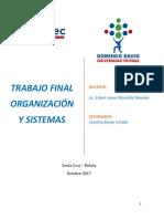 Trabajo Final Organizacon y Sistemas 22102017 de Carolina Baron