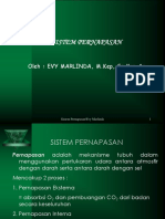 Anatomi pernapasan.ppt