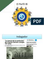Perfil Ib Coar