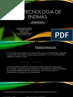 Biotecnologia de Enzimas