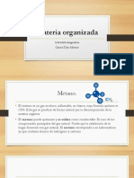 GarciaDiaz Alfonso M14S1 Materia Organizada