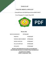 Tugas Makalah Trauma Medula Spinalis