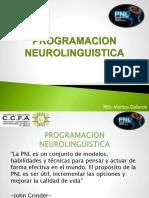 Programacion Neurolinguistica Maritza