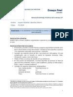 ENSAYO DE CABA.docx