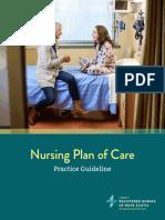 Nursing Plan of Care Practice Guideline 1