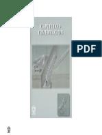 Imcyc - Construccion Edificios Cimentacion 9.PDF