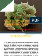 TEMA 7 BIORREMEDIACION.ppt