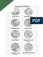 8 Types of Fingerprints Patterns