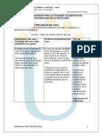 Formatos y Matrices Para Actividades Colaborativas
