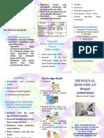 leaflet-hipertensi-dalam-kehamilan - buat Avi 2.docx