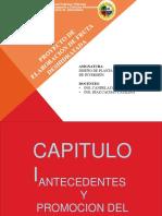 245665611-Proyecto-TRABAJO-Fruta-Deshidratada-2.pdf