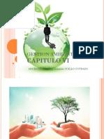 Cap.iv Gestion Ambiental 2018