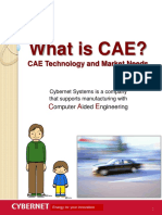 what_is_cae