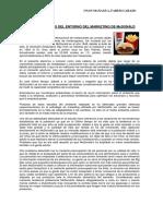 215262994 Caso de Analisis Del Entorno Del Marketing de Mcdonald