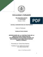Cervicalgias PDF