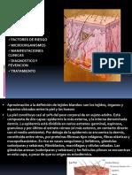 INFECCIONES COMPLICADAS DE PIEL Y PARTES BLANDAS.ppt