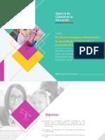 Taller Diseno de Estrategias Diferenciadas de Aprendizaje Considerando El Desarrollo de Habilidades Docentes