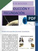 biojiji.pdf