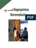 Hierro y Microorganismos Ambientales 2015