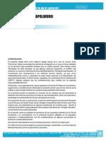 Ciepyc_n48_nota2.pdf