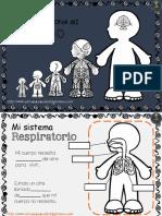COMO-FUNCIONA-MI-CUERPO-PDF.pdf