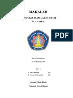 dokumen.tips_makalah-asam-laktat.docx