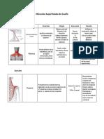 Resumen Musculos Cervicales