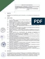 DIRECTIVA-001-2018-CENEPRED-JEFATURAL.pdf