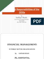 DDOs Resposibilities