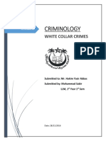 white_collar_crime.docx