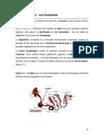 Phys_digest_3.pdf