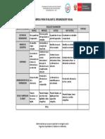 Rubrica Para Evaluar El Organizador Visual Sesion 4