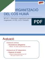4. UF1 NF Funcions Cel·Lulars